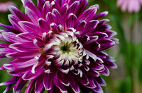 Sol-to-Soul-201207-0057-